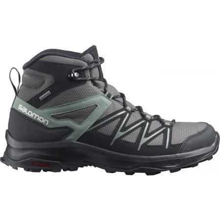 Salomon DAINTREE MID GTX - Pánská turistická obuv