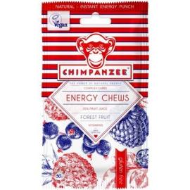 Chimpanzee CHEWS FOREST FR