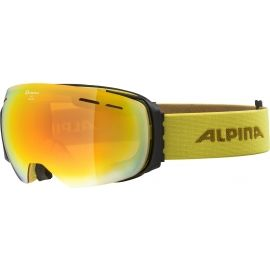 Alpina Sports GRANBY HM - Sjezdové brýle